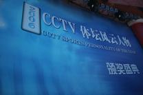 2006年CCTV体坛风云人物评选
