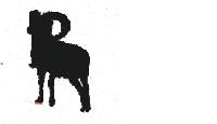 山羚<br><br>跳<br>高<br>750<br>cm<br>/<br>身<br>高<br>58<br>cm