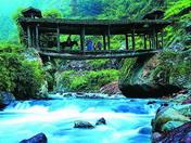 茶马古道探险——滇藏地区的´丝绸之路´
