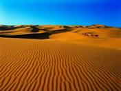 塔克拉玛干沙漠探险<br>——穿越死海