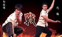武林大会准4强赛:刘猛-白经纬